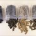 La Diputación de Badajoz desarrolla un prototipo para generar biomasa a partir de lodo y restos vegetales